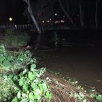 Gawler river level continues to rise. Peak expected between 10pm-4am. Pics dont do it justice #Storm #AdelaideStorm https://t.co/k1MHIGpN0h
