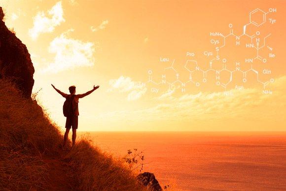 Research: Oxytocin Enhances Spirituality https://t.co/ApG00B5q4f #oxytocin #brain https://t.co/d14HrBVmye