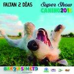 Faltan sólo 2 días para el #SuperShowCanino2016 no te lo puedes perder. #Barquisimeto https://t.co/RGabJYbmQ3