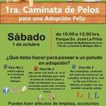 """Nuestros amigos de @RuedaMetepec nos invitan a la """"Primera Caminata de Pelos"""", este 1 de octubre, ¡Te esperamos! https://t.co/yZhMYEG4IE"""