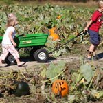 Check out our interactive map of pumpkin patches around the Peninsula https://t.co/lPkhW3S0yg https://t.co/1ffrKmHJKr