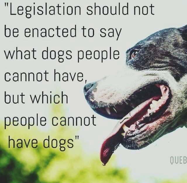 @JustinTrudeau Please ask Montreal to reconsider its ill-informed ban on #pitbulls.  #BoycottMontreal https://t.co/c4IMC73pmv