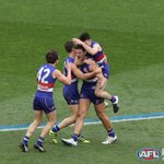 THE BULLDOGS ARE PREMIERS! #AFLGF https://t.co/6DkAAaGkga
