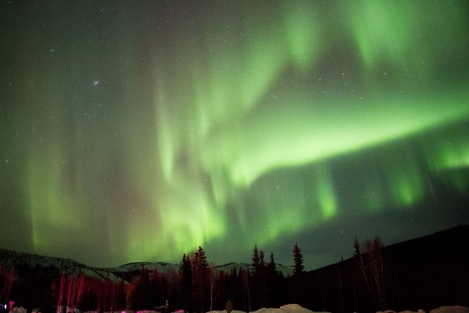 PhotographyTalk @PhotographyTalk: A trip to Alaska means that you'll have something to photograph at every turn. https://t.co/BIC6Uue2GS https://t.co/8w01TbLXvK