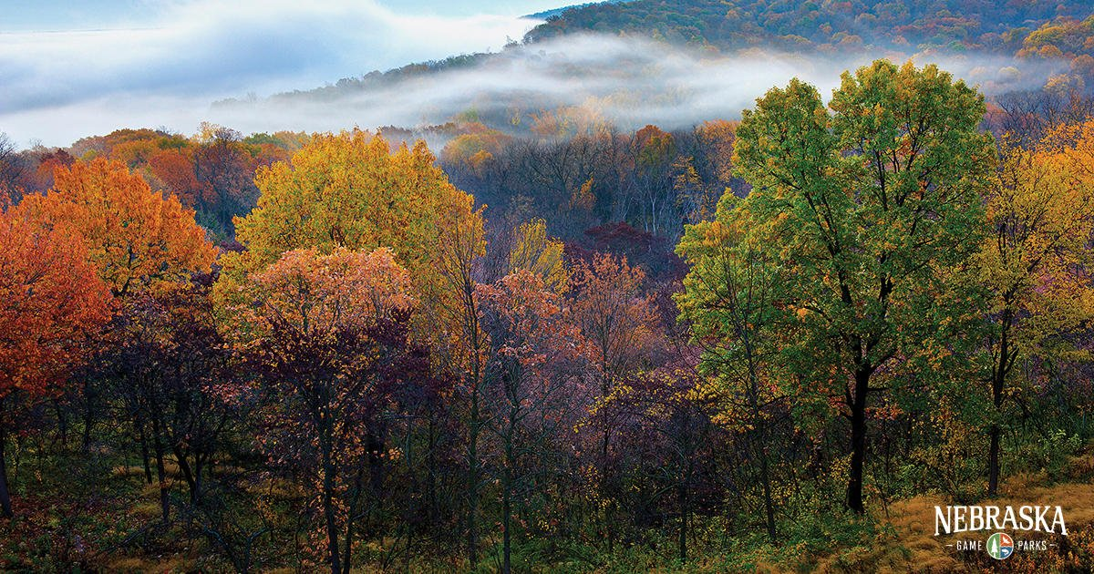 Fall colors provide some of the most stunning scenery, illustrated by this view from Indian Cave State Park. https://t.co/GRiiqsdc1j