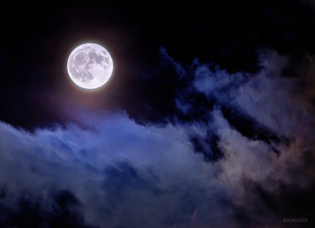 先ほど東京で撮影した満月です。 今日もお疲れさまでした。明日からおだやかな一週間になりますように。