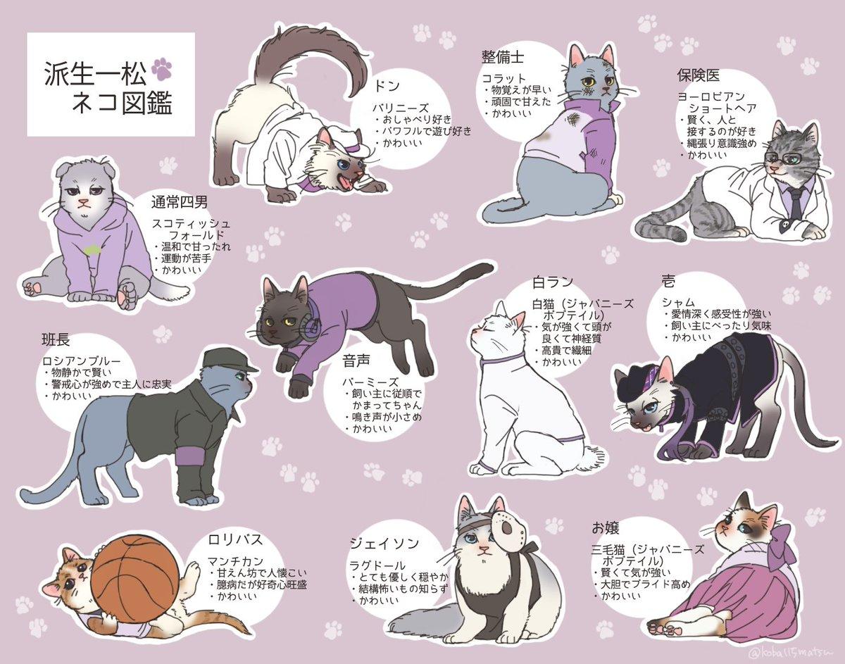 派生四男ネコ図鑑