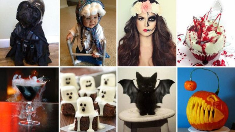 From pet costumes to spooky treats: The 47 best Halloween DIY projects on
