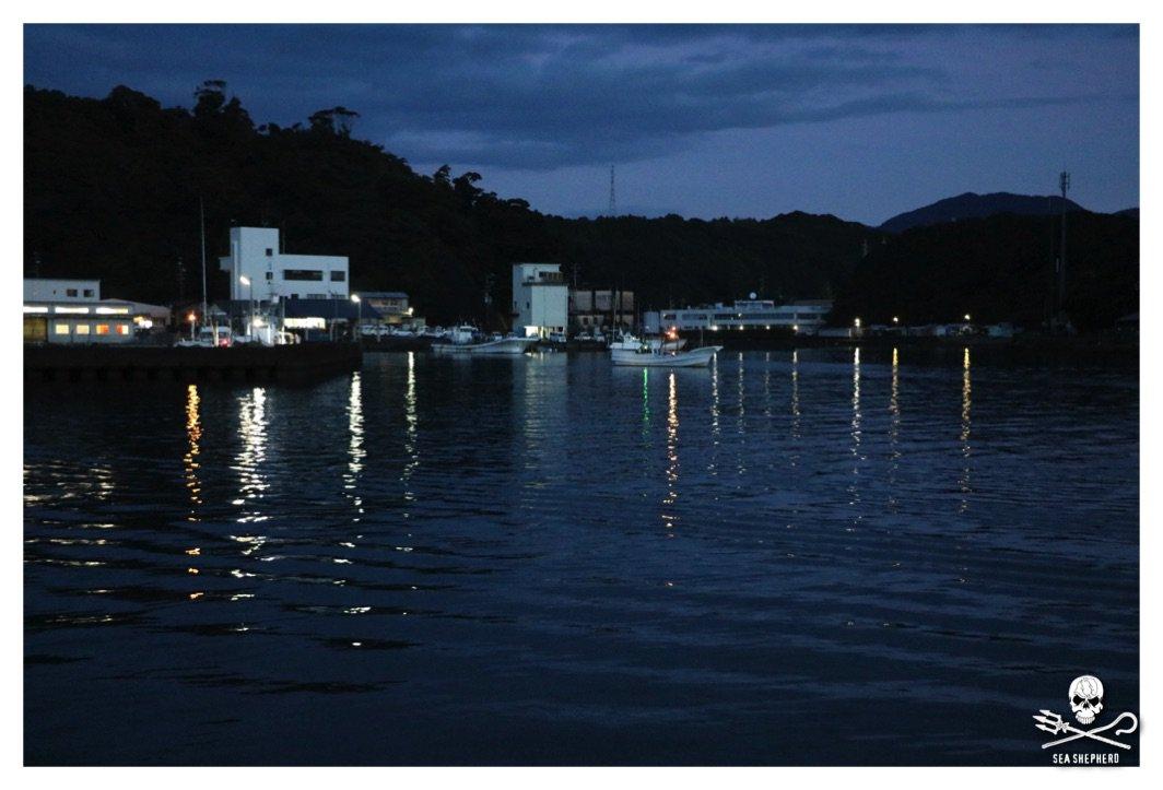 RT @CoveGuardians: 06 Oct 2016, 05:37 - 12 Banger Boats have left the harbour. #tweet4taiji #coveguardians https://t.co/CqH2DJDU3K