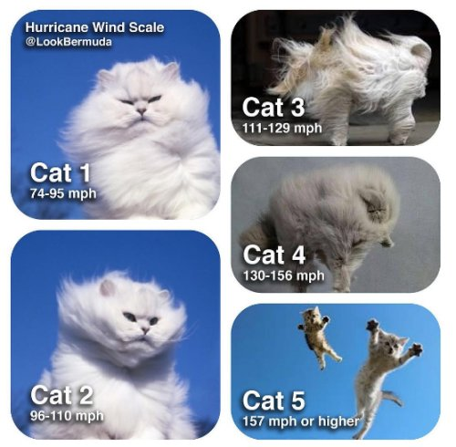 Where does #HurricaneMatthew fall on this scale, though? https://t.co/61lblAQVtr
