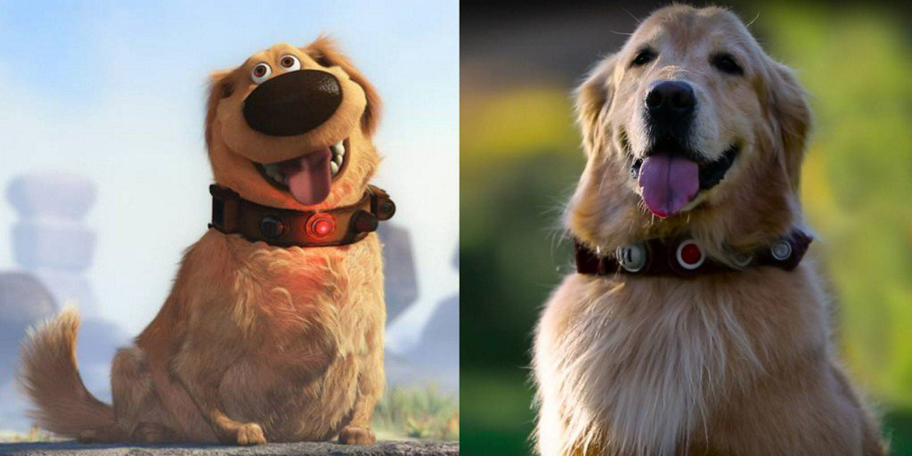 """Pixar Created Dug from """"Up"""" in Real Life, and He's So Cute You'll Cry https://t.co/rqKt3So4sj https://t.co/TO25XZl3ji"""