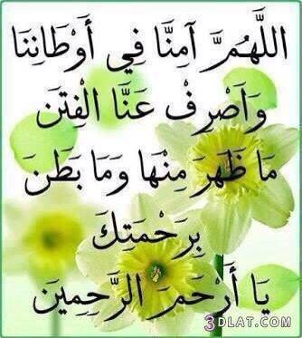 رد: صباح الخير ياوطني السعودية