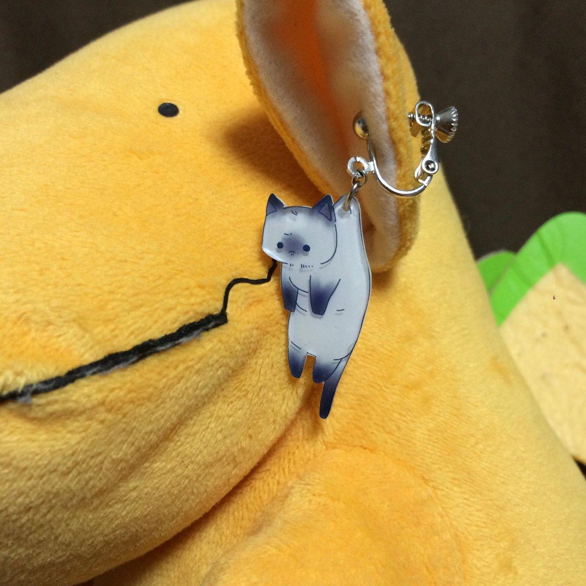 めっちゃ可愛い猫のイヤリング買ってしまってテンション上がってる https://t.co/hg7PZZgC30