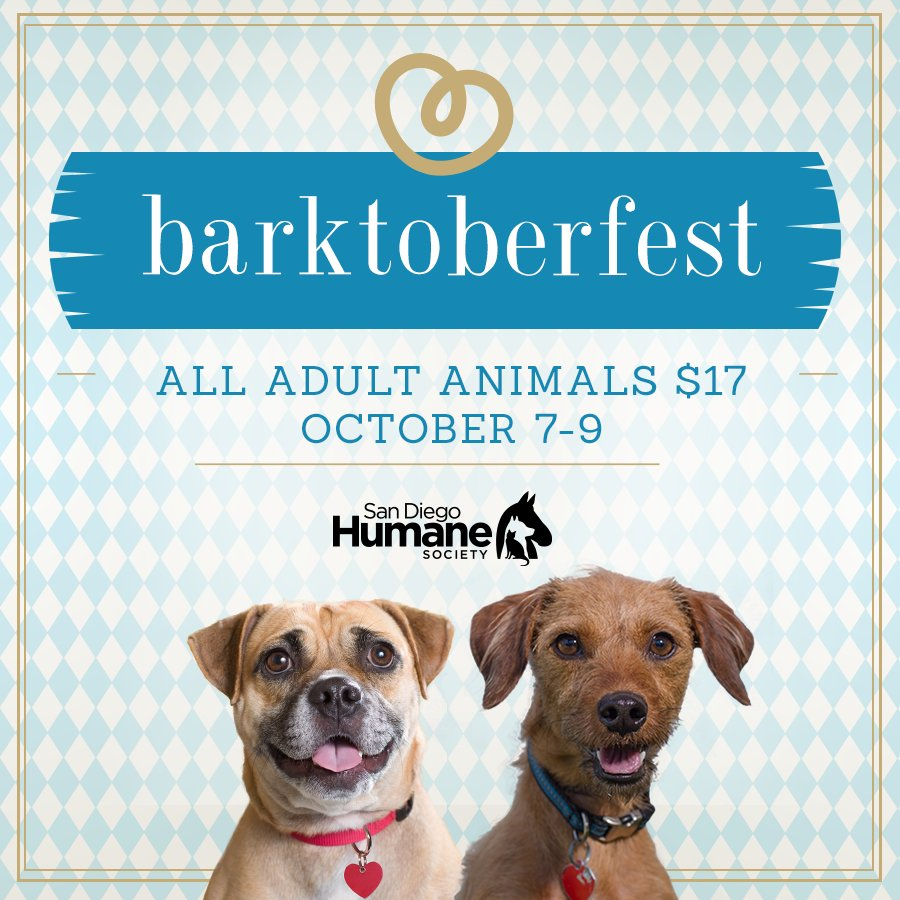 Last chance for $17 adoptions for any adult animals! We're open 10am - 6pm - see you soon! #oktoberfest #adopt https://t.co/QwtGBCeEPO
