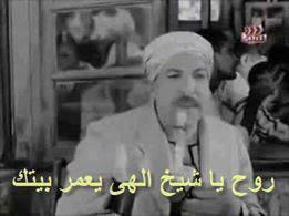 #علي_هوي_مصر: #علي_هوي_مصر