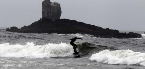 Oregon surfer hospitalized in rare shark attack