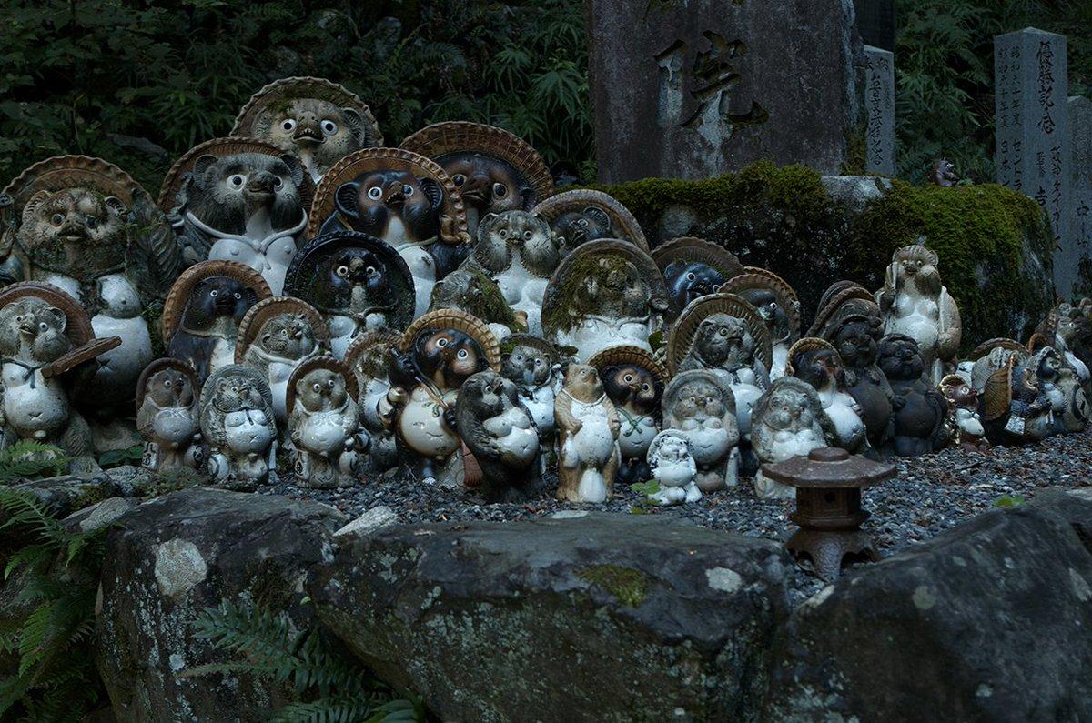 狐のあとは狸谷山不動院。鳥居とかあるけどお寺。神仏習合な感じで色々とカオス。有頂天家族2期にきっと出るよ