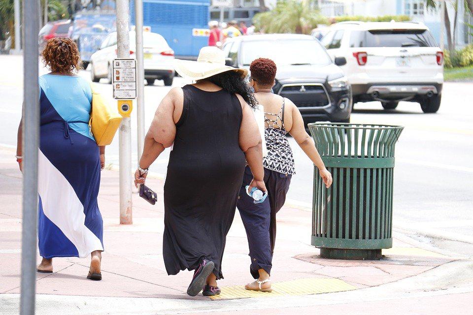 Obesity and breast cancer: https://t.co/TCg07qVjNk https://t.co/GjLtMlGBin