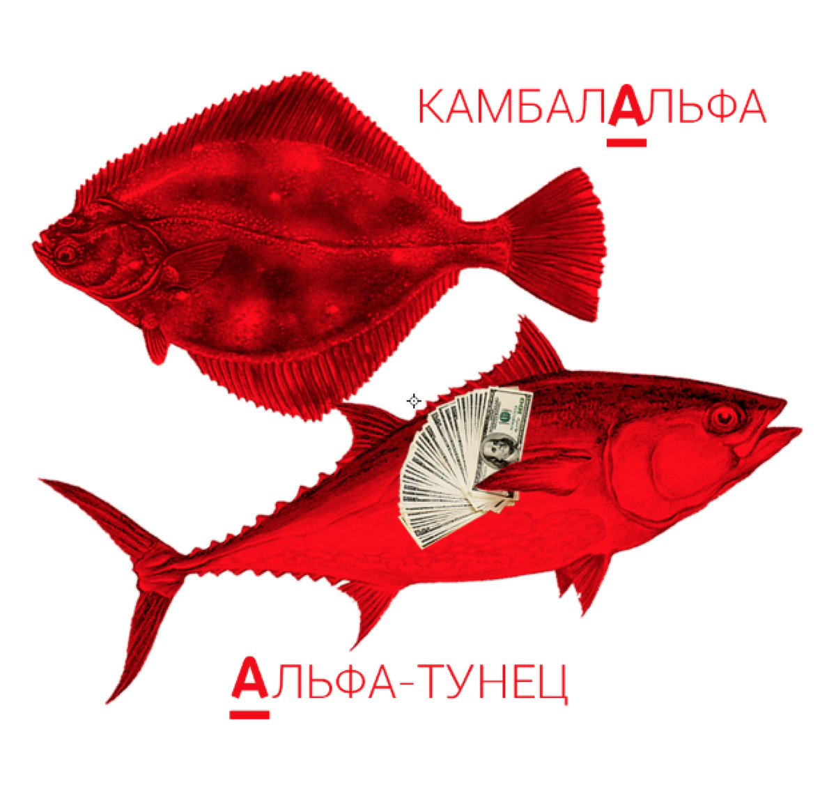 @Beeline_RUS @GoogleRussia @aviasales Наши рыбы к вам доплыли! Что у вас, @Mastercard_Ru? Мастеркарп не предлагать! https://t.co/zpy6figeTn