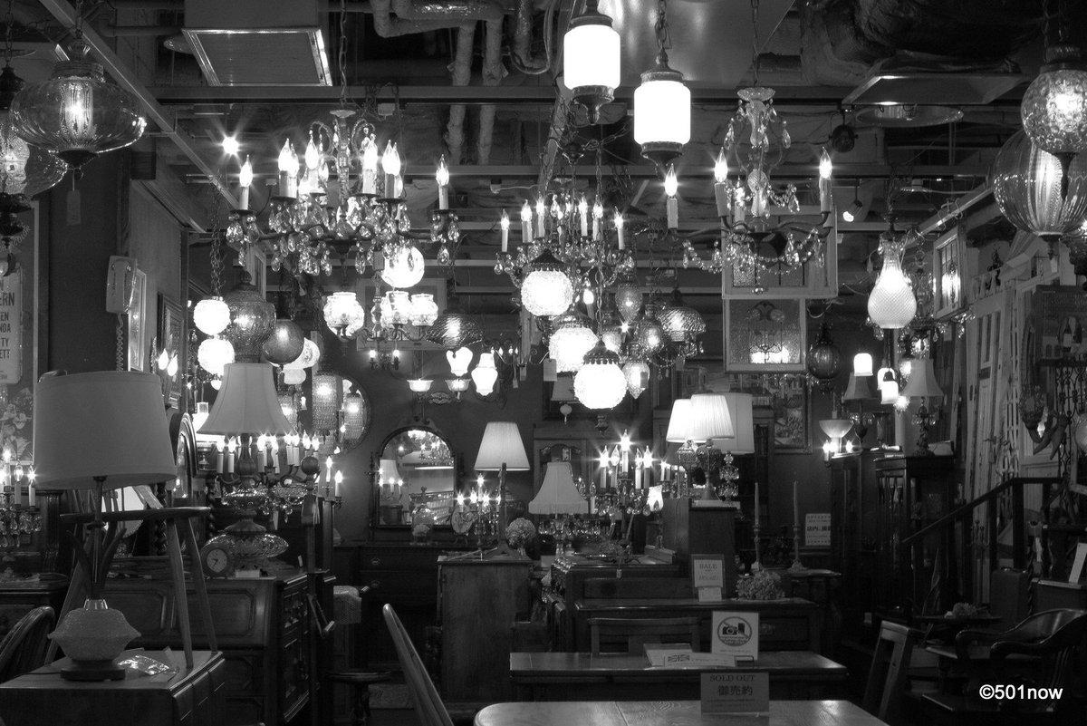 @501now: 『灯の森』#写真撮ってる人と繋がりたい#写真好きな人と繋がりたい#ファインダー越しの私の世界#写真 #