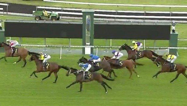 Bizzare finish sees seven horses finish in numerical order in Australian race https://t.co/NYjwgJwzHF https://t.co/B0tbWo3XUM