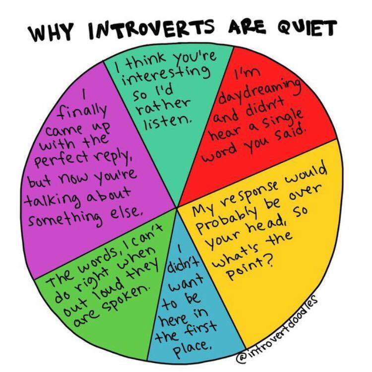 I love this graphic so much. For you introverts out there, why are YOU quiet? (via @IntrovertDoodle) https://t.co/84klmFM024