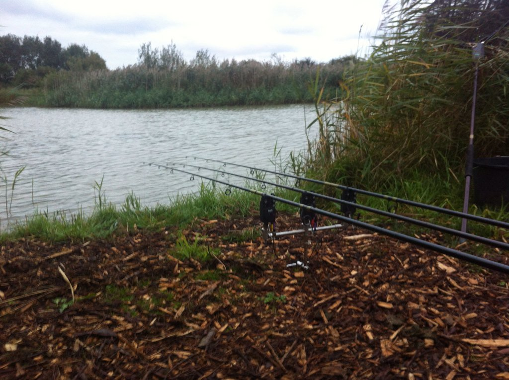 6pm and rods out so let's see if mr carp wants to playbcome on you lumps #carp #carpfishing #<b>Tigh