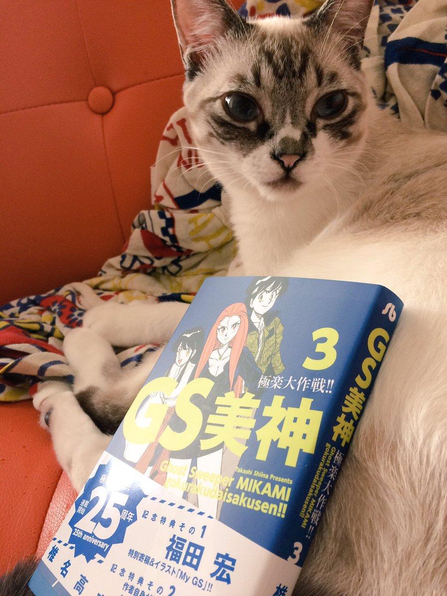 GS美神文庫版!第3巻の内容は小竜姫さまとの修行編から横島くんランジェリー編、愛子登場編、アニメで普通に怖かったパイパー