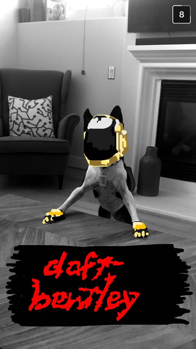 Every morning my boss sends me the dopest snaps of his dog. https://t.co/kqDkjxwHQj