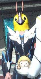ちなみにこのキャラのボイスはPSO2アニメのイツキボイスらしいです