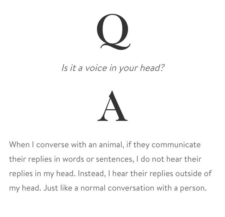 Goop's interview with an animal therapist has made my morning. https://t.co/p6MmRkCe9y