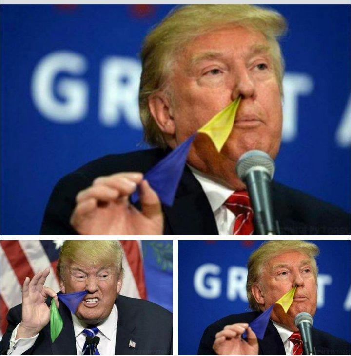 ドナルド・トランプの画像を「鼻から旗を引っ張り出してるところ」に加工した人がいるんだけど、なぜそんなことを思いついたんだ(そして実行したんだ)というか、そもそもなぜそんなにぴったりくるんだというか、インターネットにはいろんなものがある…
