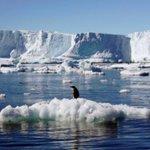 Q&A: Fish and politics behind Antarctic marine reserve deal