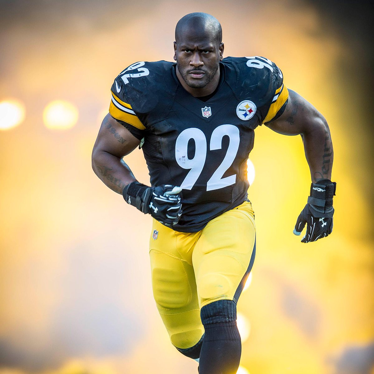 greg lloyd  james harrison is a warrior  i would have