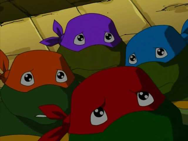 子亀が可愛いって話はもうしましたっけ?(*´Д`*)#TMNT #タートルズ #ミュータントタートルズ