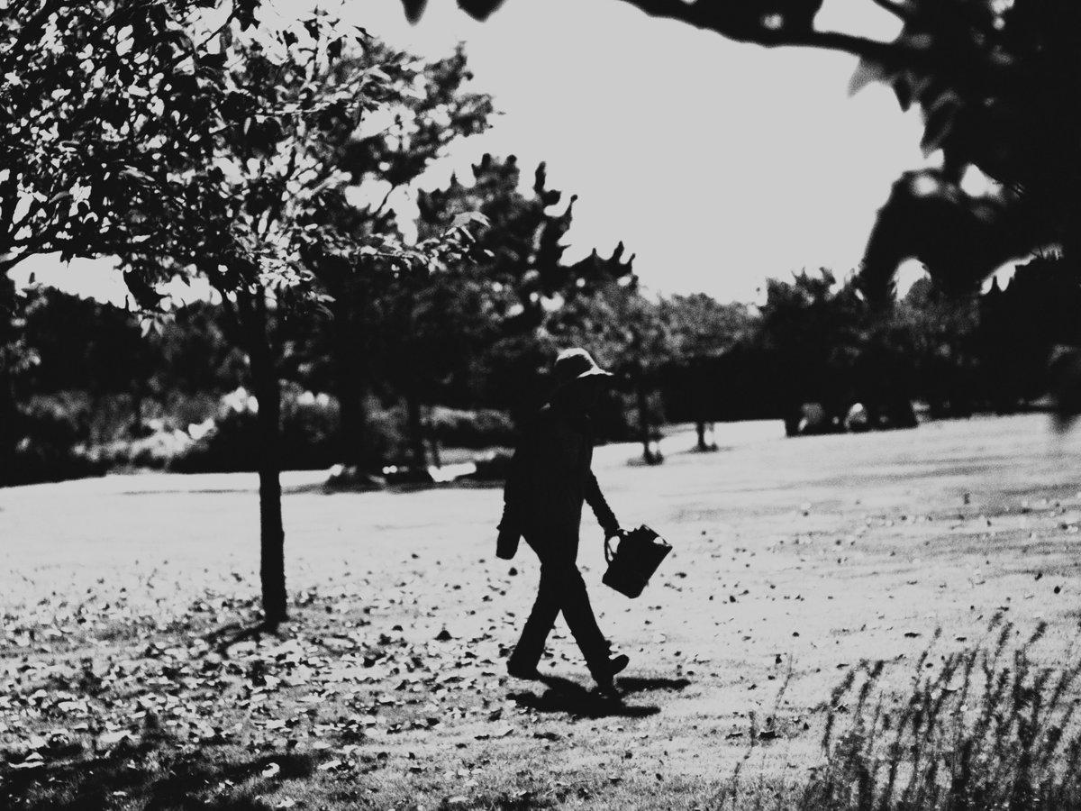『闊歩』#モノクロ#モノクローム #ふぉと#coregraphy #photography #ファインダー越しの私の世界