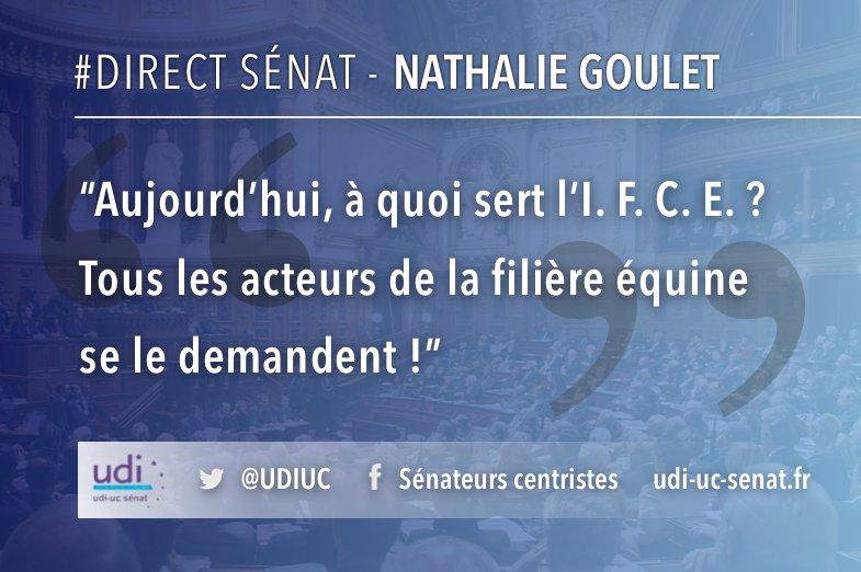 #DirectSenat @senateur61 s'exprime dans le cadre du débat sur la situation de la filière équine au @Senat_Direct