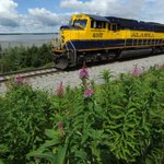 Alaska Railroad sees hope in marijuana industry and other areas as profits drop