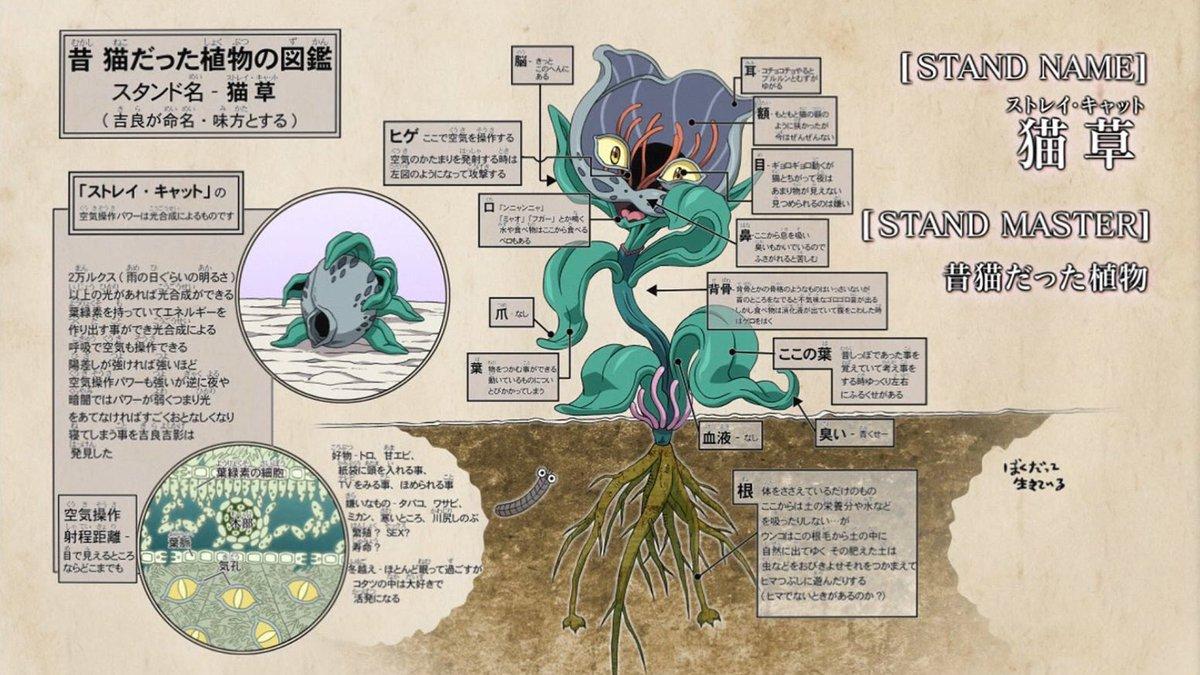 #jojo_animeこれで君も猫草博士だ!