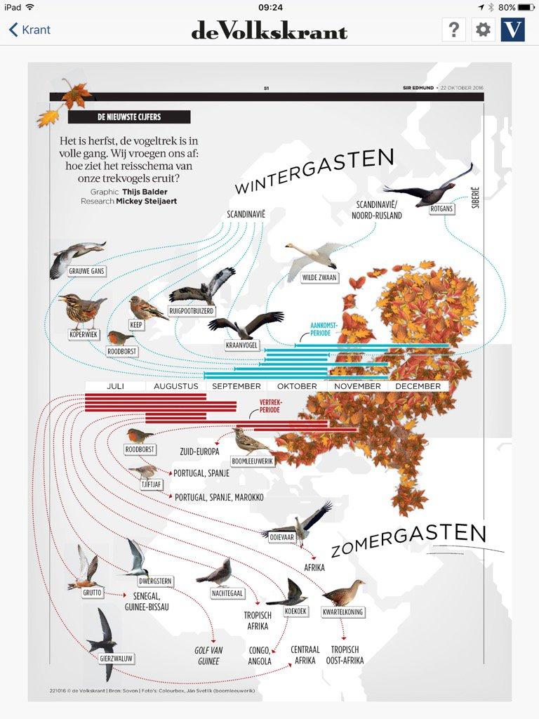 Mooi! Het reisschema van de trekvogels. Met dank aan de #VK https://t.co/ZVSSLE0xl7