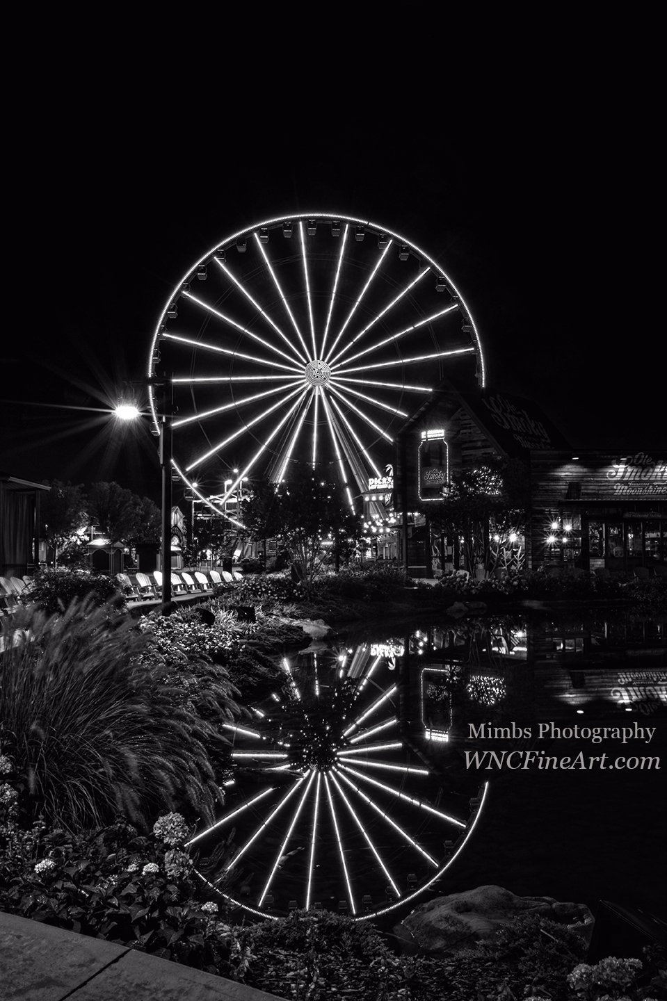 Water Moonshine and a Big Wheel in Black and White The Island at Pigeon Forge, Tennessee #blackandwhitephotography https://t.co/lMAcVxuJhE