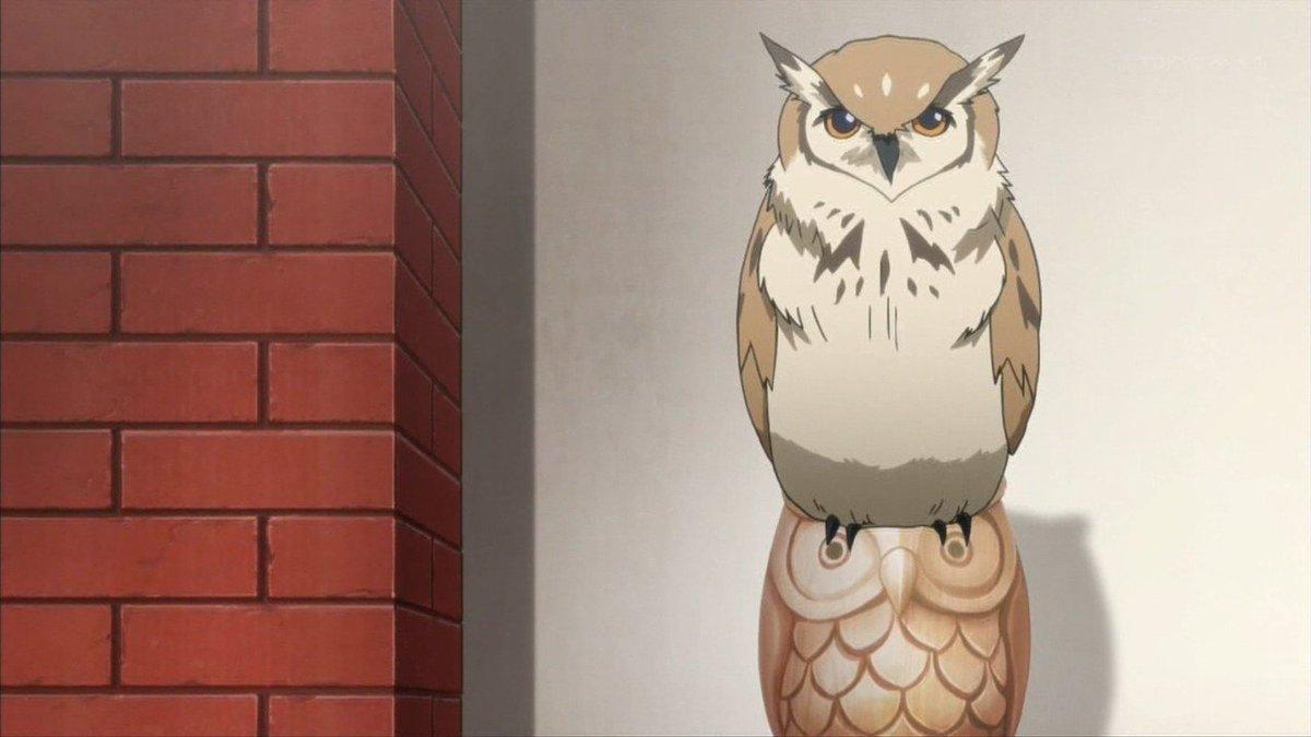 ED曲を猛禽類が歌うアイドルアニメ!それが少年ハリウッド! #アイドルの成長劇を見守りたい