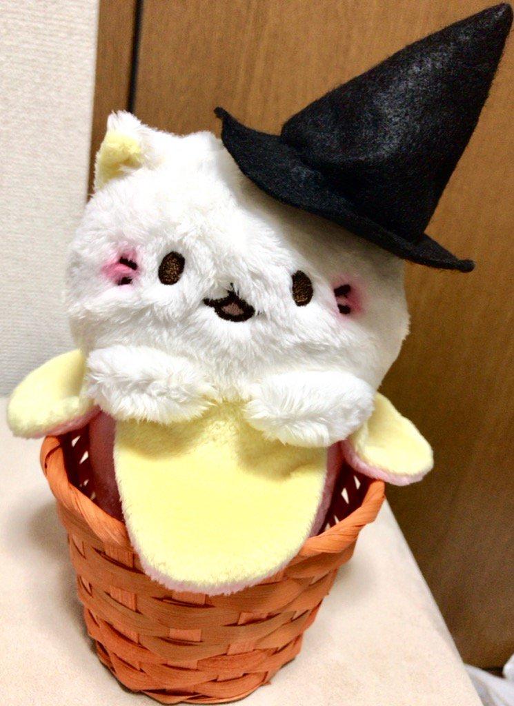 けながばなにゃにハロウィン用のカゴと、帽子作ってあげた!あともう少しハロウィンぽくしてあげたい…