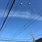 青空を横断するヨルムンガンド!(のあばら骨)