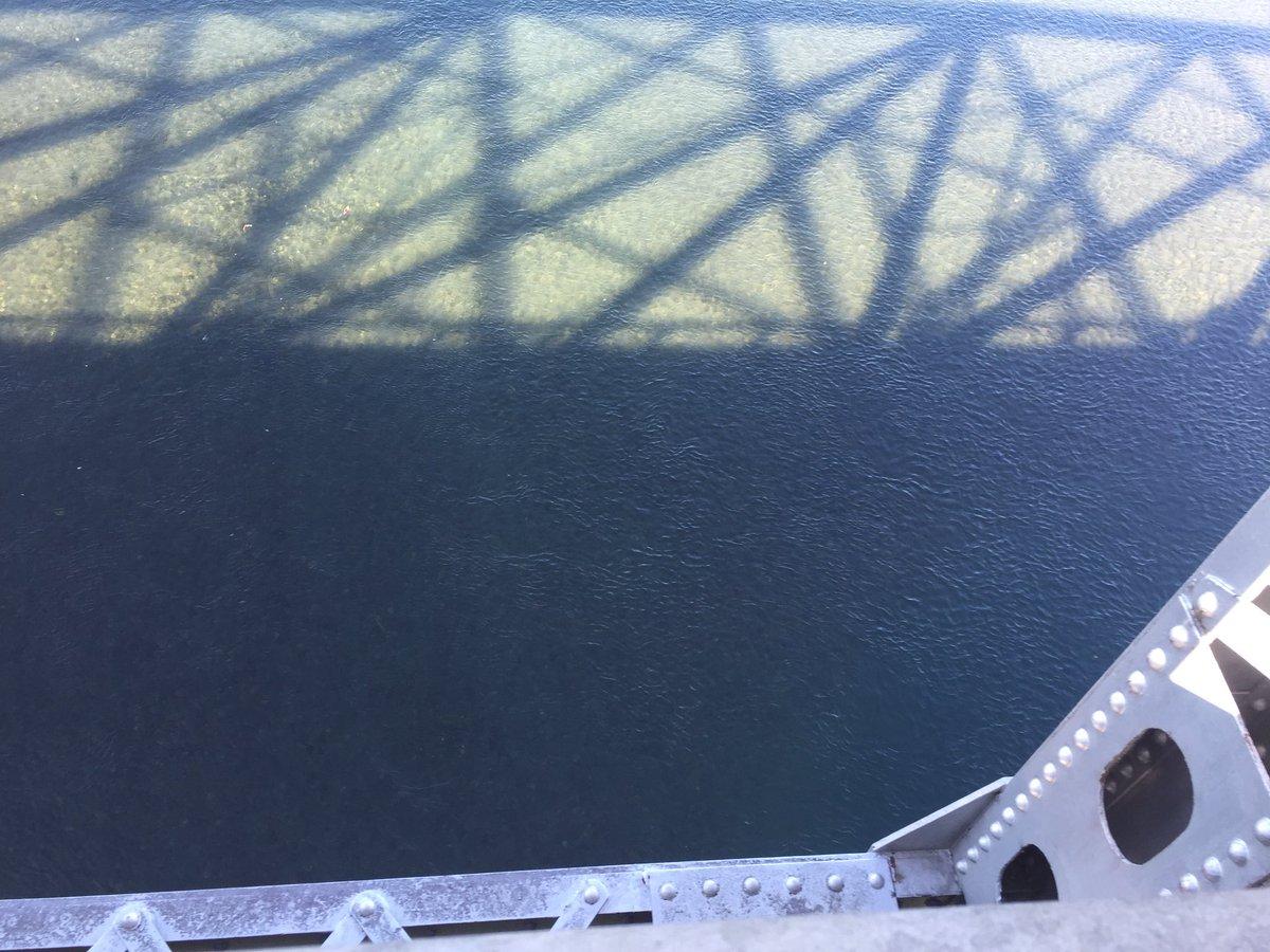 #聲の形冒頭の自殺を考えていた橋。そこそこの高さがあります。おそらく花火大会を見ていた所。この辺の土手にシートを広げてい