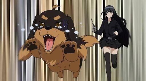 言われて調べた犬とハサミは使いようというアニメのわんちゃんというか主人公??毎朝私とのぶながはこんな感じですけどw※ハサ