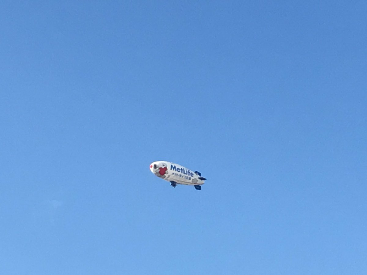 スヌーピーの飛行船とんでた!!飛行船ってメットライフのスヌーピーしかほぼ見やん🤔( ・ ´`(●)最高👏💗
