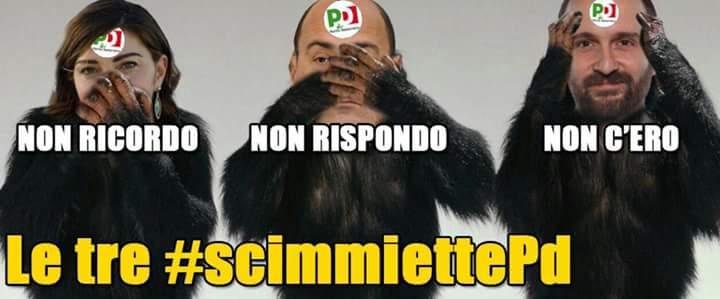 #scimmiettePd