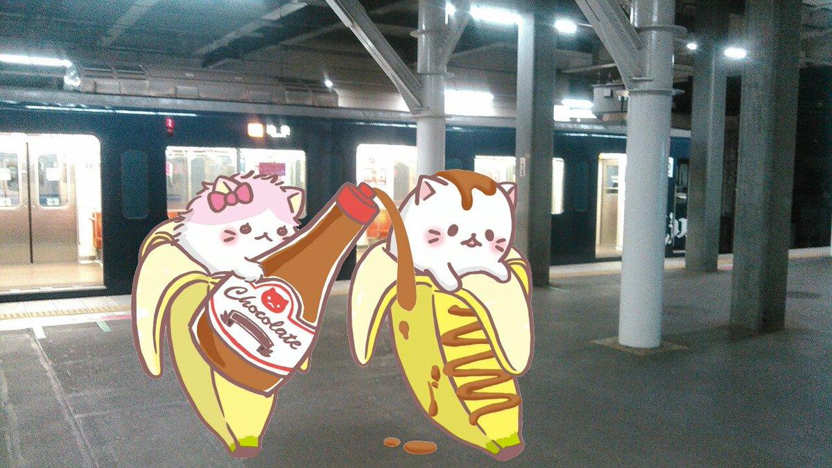 所沢駅に着いた!ライオンズカラーの電車です!:  #ばなにゃ #埼玉聖地横断ラリー