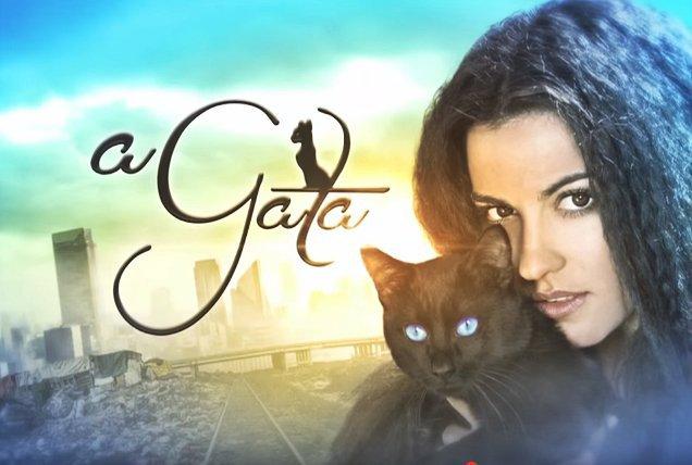 #AGata054: A Gata 054